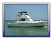 Private Cancun Fishing Trips