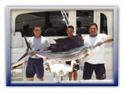 Sailfish Cancun Fishing Trips