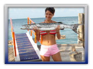 Big Game fishing charters